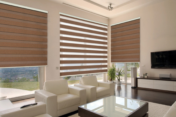 Combination Shades Ford Window Treatments
